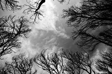 veronica_perez_granado_photography_periodista_fotografa_documentalismo_reportajes_Incendios_tramontana